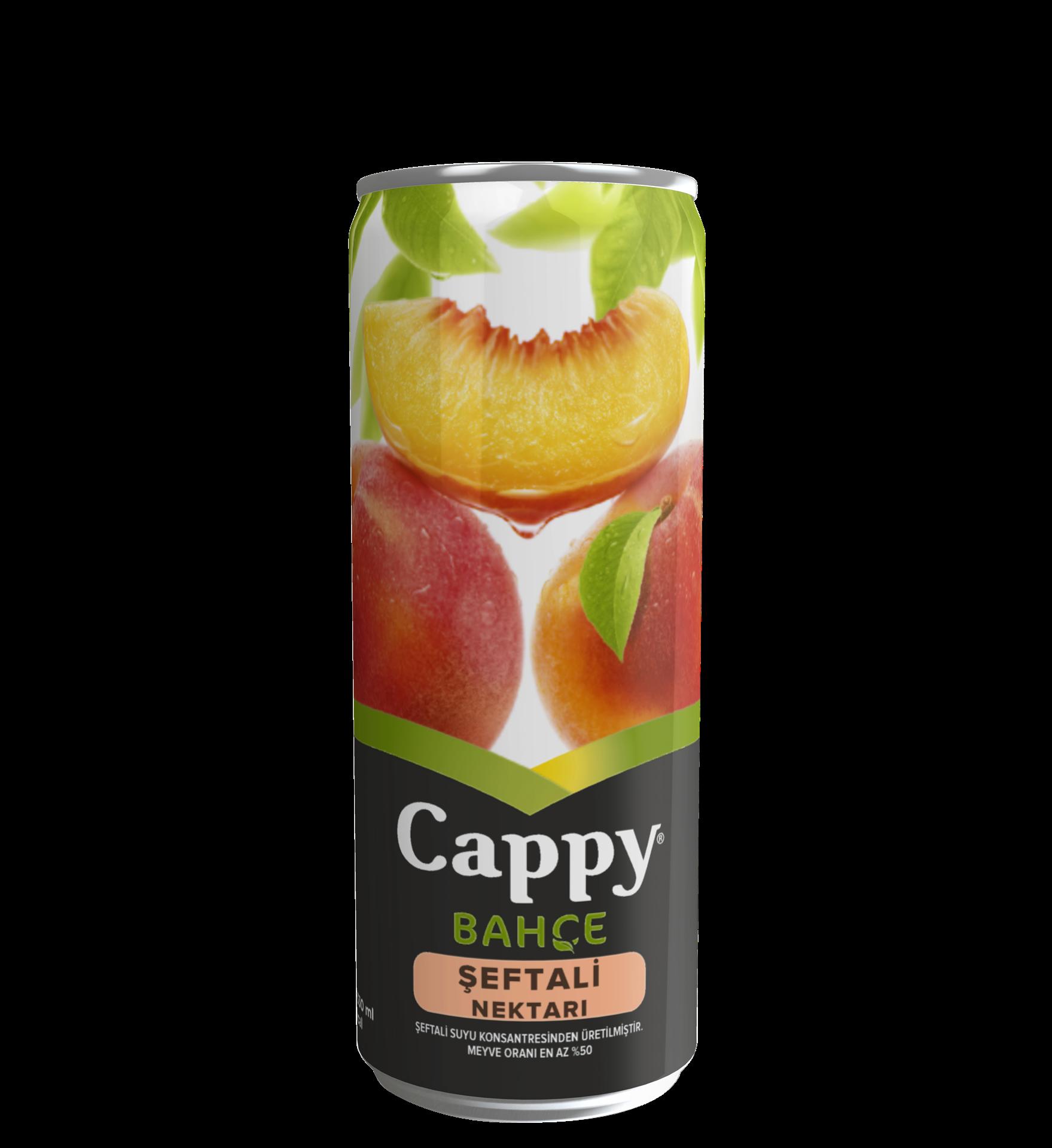COCA CAPPY 330ML SEFTALI